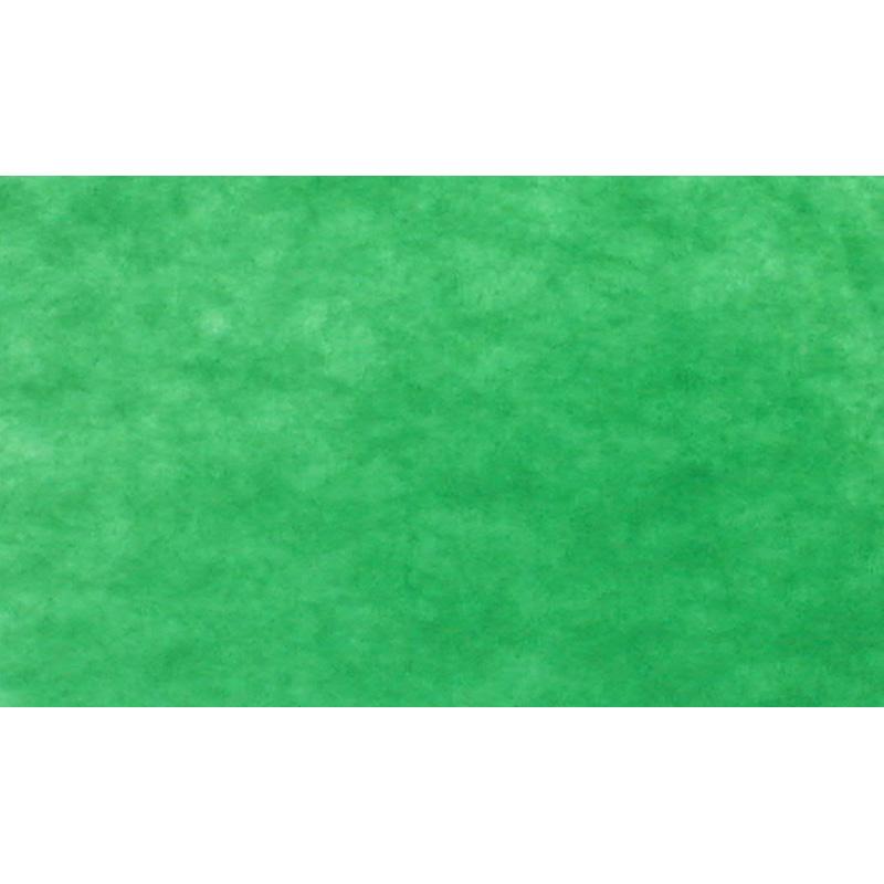 UNIFORM BACK GREEN 2x3m art. 08658