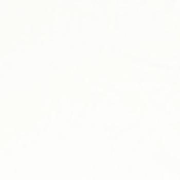 UNIFORM BACK WHITE 3x6m art. 08600